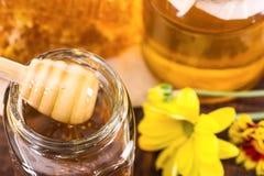 Twee kruiken van honing en gele bloemen Stock Foto