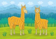 Twee lama's royalty-vrije illustratie