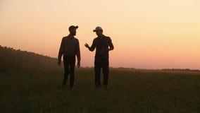Twee landbouwers die op het gebied lopen Zij dragen materiaal om een boom te planten Op de zonsondergang Zachte nadruk stock videobeelden