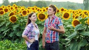 Twee landbouwers spreken, man en vrouw in het agrarische gebied, die op een gebied van zonnebloemen spreken stock video