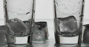 Twee lege schoten van wodka in glazen met ijsblokjes Witte achtergrond stock fotografie