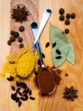 Twee lepels met specerijen op de lijst Royalty-vrije Stock Afbeeldingen