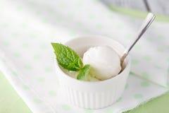 Twee lepels van wit roomijs - citroen, vanille of kokosnotenaroma Royalty-vrije Stock Fotografie