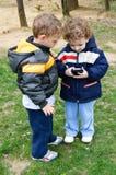 Twee leuke jonge geitjes Royalty-vrije Stock Afbeelding