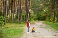 Twee leuke jonge zusters die pret hebben tijdens bosstijging op mooie de zomerdag Kinderen die aard onderzoeken Actieve familievr royalty-vrije stock fotografie