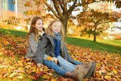 Twee leuke jonge zusters die pret op mooie de herfstdag hebben De gelukkige kinderen die in de herfst spelen parkeren Jonge geitj stock fotografie
