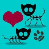 Twee kattenskeletten in liefde Stock Afbeeldingen