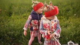 Twee leuke kleine tweelingzusters fotograferen zich op een groene weide, gebruikend een telefoon en een stok voor selfie wederzij stock video