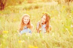 Twee leuke kleine zusters op een weide royalty-vrije stock fotografie