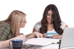 Twee leuke meisjes die bij hun bureaus bestuderen Stock Afbeelding