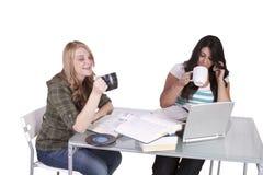 Twee leuke meisjes die bij hun bureaus bestuderen Royalty-vrije Stock Foto's