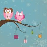 Twee leuke uilen op de boomtak Stock Afbeeldingen