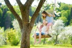 Twee leuke zusters die pret op een schommeling in de tot bloei komende oude tuin van de appelboom in openlucht op zonnige de lent stock foto's