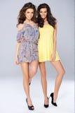 Twee levendige mooie jonge vrouwen Royalty-vrije Stock Afbeelding