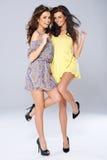 Twee levendige mooie jonge vrouwen Royalty-vrije Stock Foto's