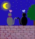 Twee liefdekatten onder de maan Stock Foto
