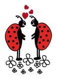 Twee lieveheersbeestjes Royalty-vrije Stock Afbeeldingen