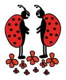Twee lieveheersbeestjes Stock Afbeelding
