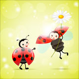 Twee lieveheersbeestjes met een madeliefje stock illustratie