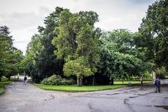 Twee manieren in Jardin des Plantes in Toulouse Royalty-vrije Stock Foto's