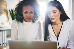 Twee medewerkers die aan project met laptop werken royalty-vrije stock afbeelding