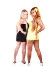 Twee meisjes die daar terug shooing. Stock Fotografie