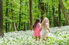 Twee meisjes die in de lentebos lopen Stock Foto