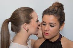 Twee meisjes die een geheim delen royalty-vrije stock afbeelding