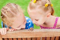 Twee meisjes die op een slak letten royalty-vrije stock fotografie