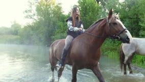Twee meisjes die paarden berijden uit het water vroeg in de ochtend in de mist stock video