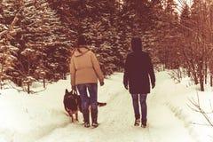 Twee meisjes en een hond lopen in het de winterbos royalty-vrije stock fotografie