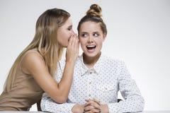 Twee meisjes roddelen Royalty-vrije Stock Afbeelding
