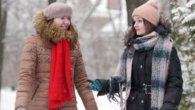 Twee meisjes in winter die en met elkaar lopen de spreken Bespreek iets stock video