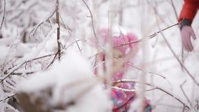 Twee meisjes zijn verward in het sneeuwbos stock video