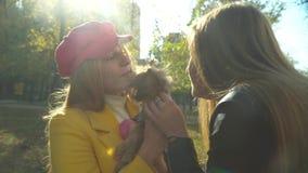 Twee meisjeshuisdier de hond in het park stock videobeelden