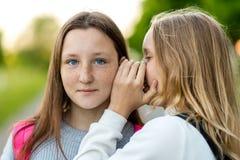 Twee meisjesschoolmeisje, in de zomer in een park in aard Zij fluistert in mijn oor Het concept, het geheim, de verrassing, stock foto's