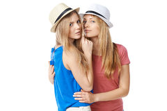 Twee meisjesvrienden Stock Foto's