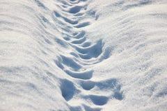 Twee menselijke stappen in de sneeuw op een Zonnige dag, ijzige gang op de vers gevallen sneeuw Glans van sneeuw in de zon op een royalty-vrije stock foto's