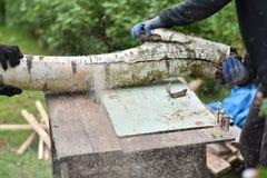 Twee mensen die hout snijden die cirkelzaag gebruiken Royalty-vrije Stock Fotografie