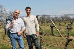 Twee mensen die naakte wijnstokken in orde maken royalty-vrije stock afbeelding