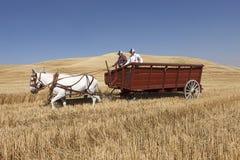 Twee mensen in een tarwewagen stock foto's