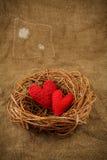 Twee met de hand gemaakte harten in het nest Royalty-vrije Stock Foto