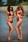 Twee modellen stellen sexy bij tropische strandplaats royalty-vrije stock afbeeldingen