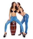 Twee mooie berunettevrouwen royalty-vrije stock afbeelding