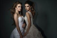 Twee mooie bruiden met perfect maken omhoog en kapsel die luxueuze huwelijkskleding en schitterende oorringen dragen stock fotografie
