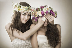 Twee mooie de lentefee, grappig, vriendschapssymbool Stock Afbeeldingen