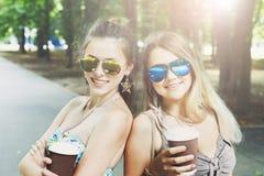 Twee mooie jonge boho elegante modieuze meisjes die in park lopen Stock Afbeeldingen