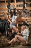 Twee mooie meisjes, blonde en brunette, met land kijken, binnen geschoten in stabiele, rustieke stijl Aantrekkelijke vrouwen met  stock fotografie