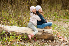 Twee Mooie meisjes die een baretzitting bij logboek het stellen dragen Stock Afbeelding