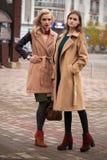 Twee mooie meisjes in een de herfstlaag stock afbeeldingen